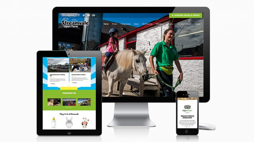 Streamvale Farm Web Design